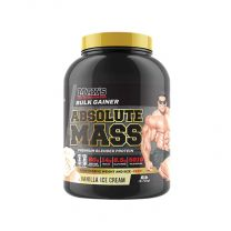 Max's - Absolute Mass 6LB